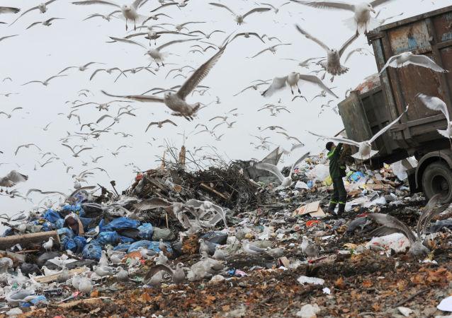 普京:環境和氣候問題或將招致大規模的動蕩