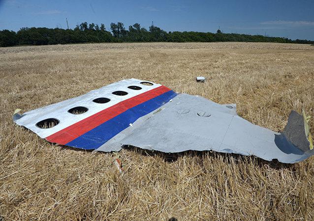馬來西亞總理不排除將與普京在符拉迪沃斯托克討論馬航MH17空難問題