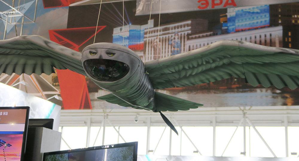 「極地貓頭鷹」無人機