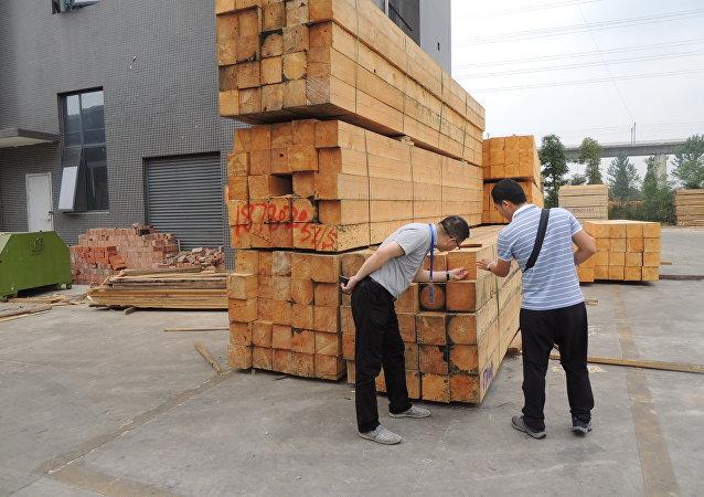 俄副總理:約42%的俄木材出口至中國