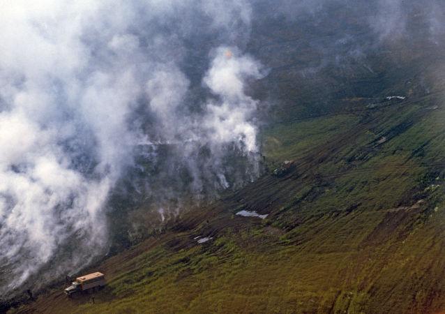 媒體:北極火災導致有害氣體排放規模打破記錄