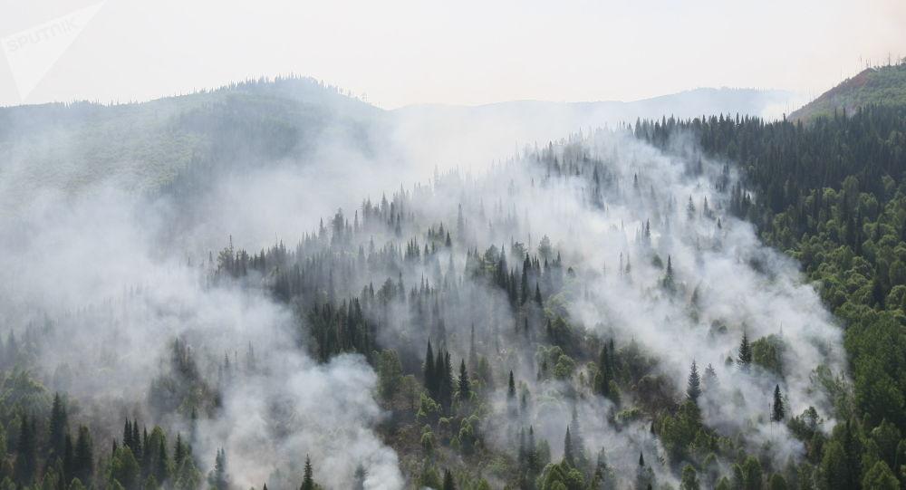 俄國防部航空隊兩晝夜撲滅11.3萬公頃的森林大火