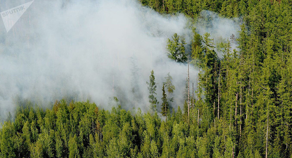 西伯利亞林火面積數周以來首次開始縮減