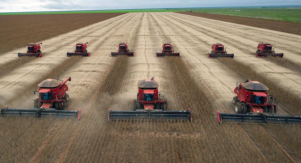 養活自己養活全世界:中國為全世界20%的人口保障農產品供應