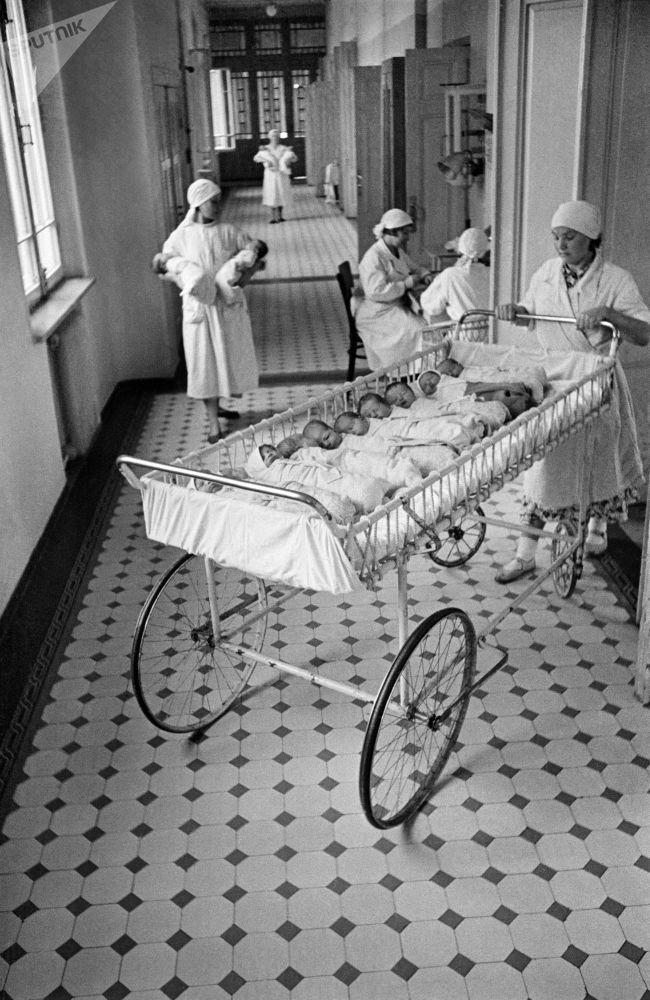 莫斯科一家產院的新生兒哺乳時間。1955年。