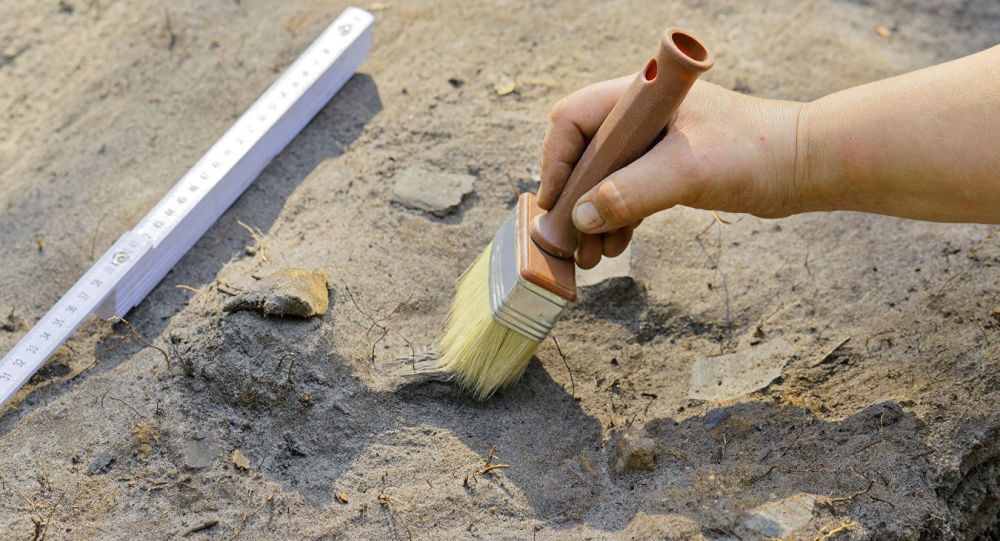 俄媒:中國浙江出土距今8000年史前遺跡