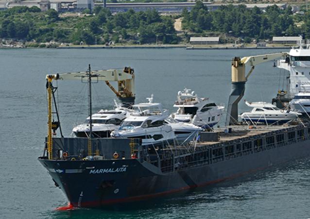 俄駐喀麥隆大使館:有關贖買被海盜綁架俄船員的談判可能將持續2周