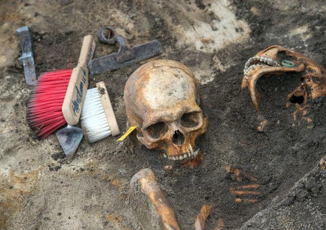 考古學家解釋克羅地亞出土的人類頭骨為何形狀怪異