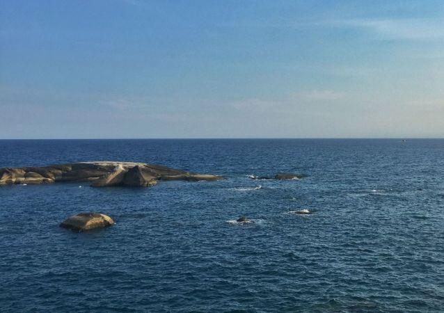 希望越方避免採取干擾南海和平穩定和雙邊關係大局的行動