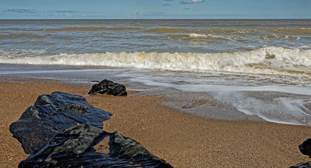 美國海灘上發現的奇怪生物:「鯨魚鼻涕」還是「外星人」?