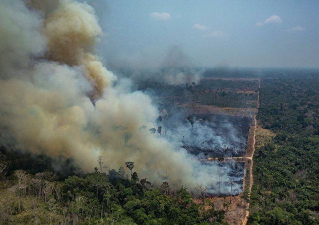 森林山火(資料圖片)