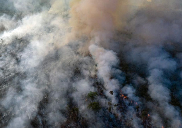 迪卡普里奧否認巴西總統有關資助亞馬遜縱火犯的指控