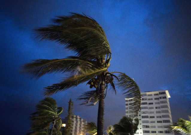「多里安」颶風在巴哈馬造成死亡人數升至七人