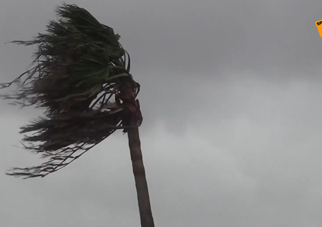 多里安颶風肆虐巴哈馬死亡人數已升至7人