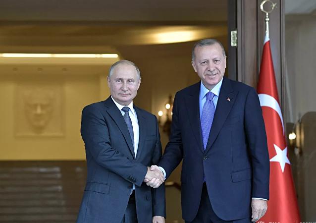 克宮:普京和埃爾多安並未討論伊德利卜襲擊事件
