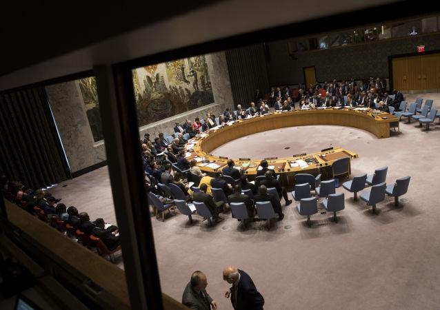 德外長:安理會的工作因美俄中合作有限而困難重重