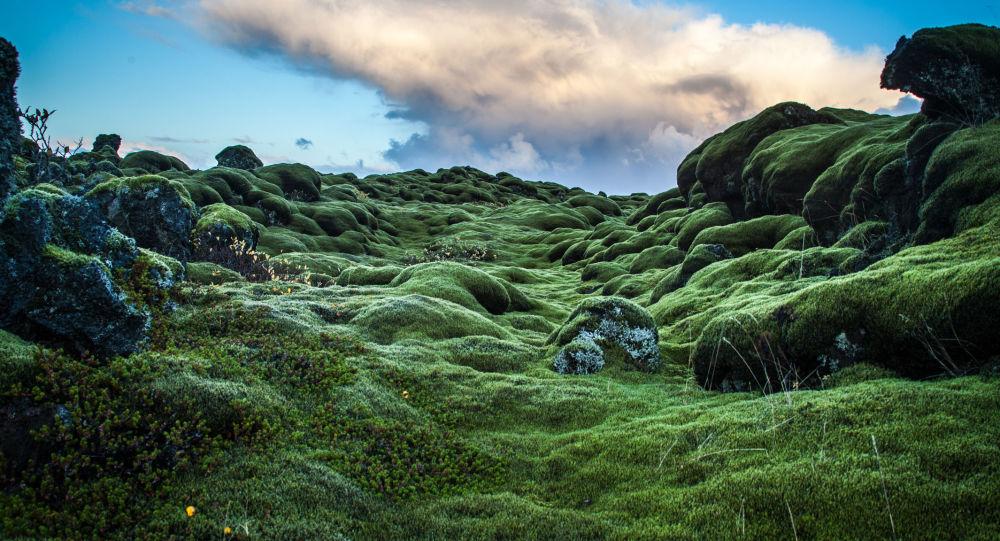 冰島製作遊客安全地圖 可助遊客回避極端天氣