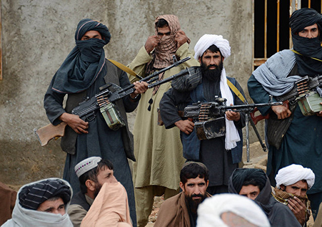 塔利班運動