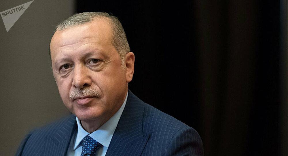 土耳其總統擬與普京討論履行俄土有關敘問題備忘錄事宜