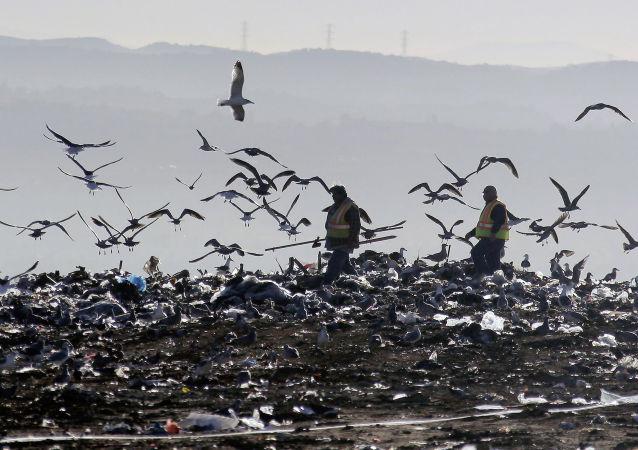 專家:俄羅斯不會遭遇垃圾糾紛