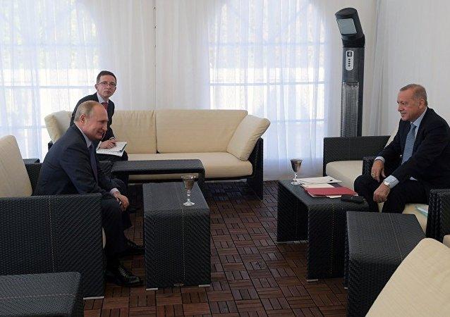俄總統新聞秘書:普京與埃爾多安就敘利亞問題調解備忘錄