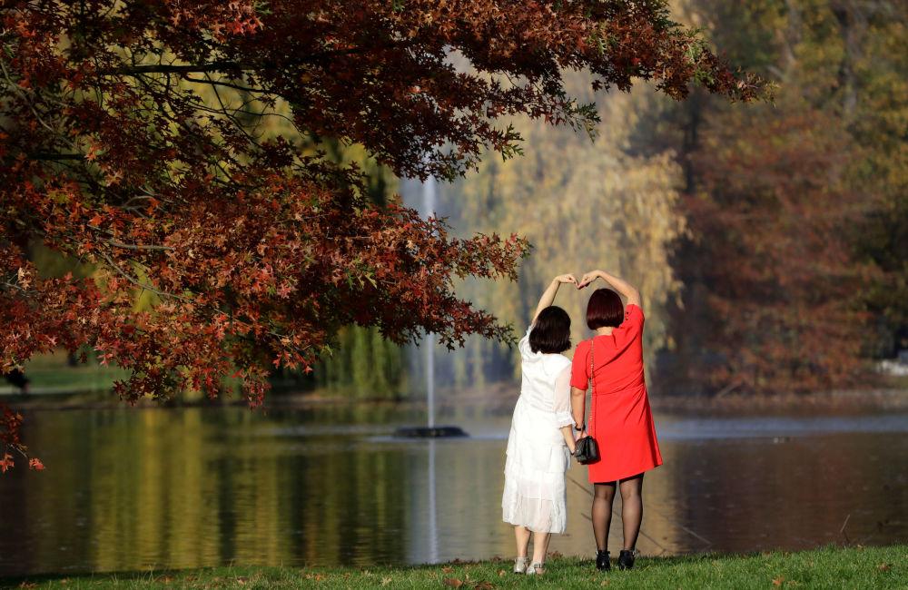 世界各地的秋天