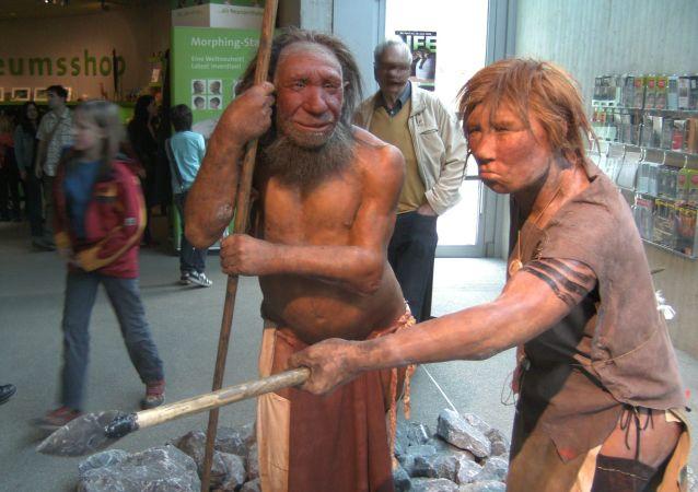 尼安德特人博物館,德國梅特曼市