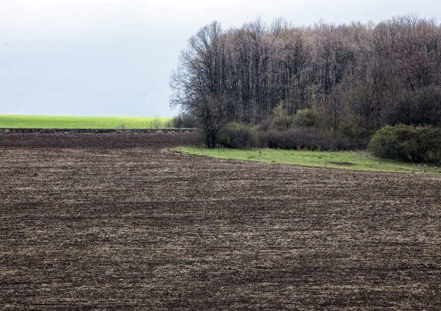 烏總統:是否允許外國人購買烏克蘭土地一事將付諸全民公投