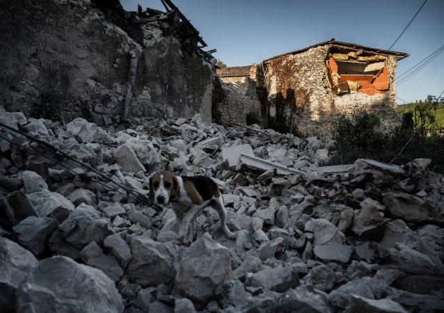 6.0級地震