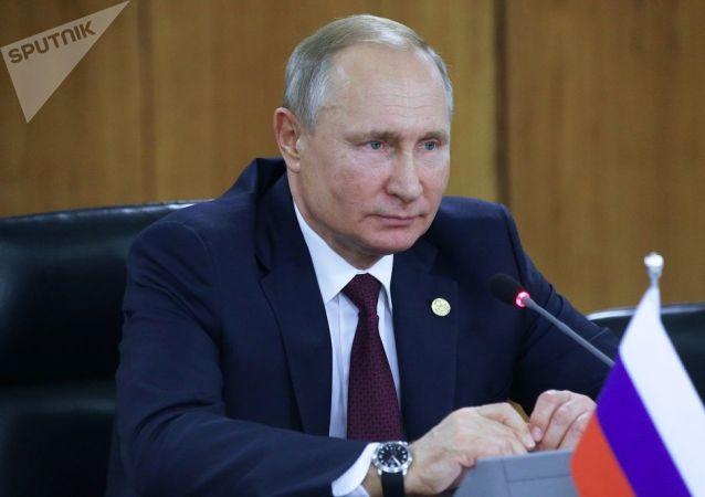 克宮:普京在金磚峰會上談到軍控問題