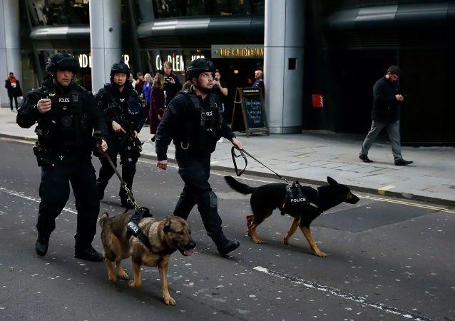 媒體:倫敦橋襲擊事件犯罪分子曾被判參與恐怖活動