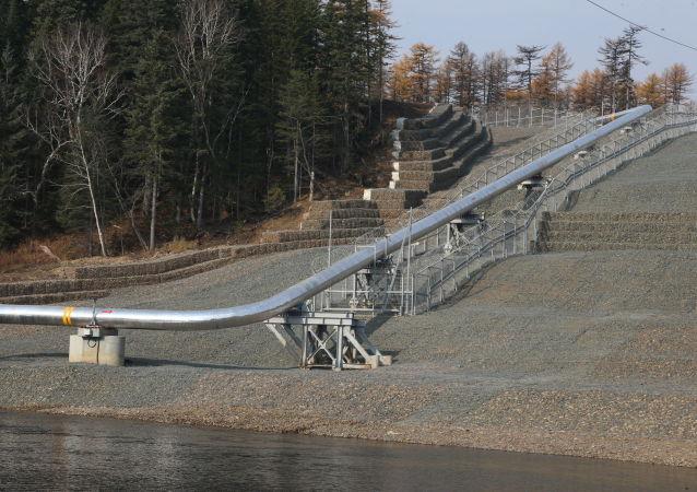 「西伯利亞力量」管道建設重視生態問題