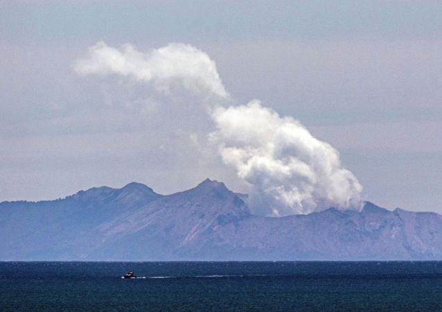 新西蘭在火山爆發後要求美國提供120萬平方米的皮膚