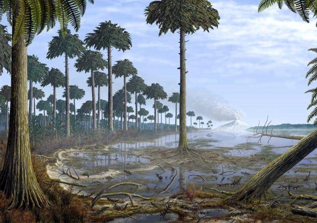 美國發現世界最古老森林「遺跡」