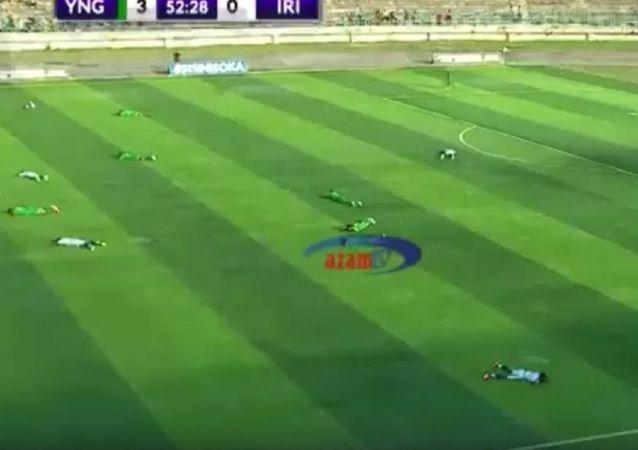 一群蜜蜂迫使球員在比賽中爬到草坪上