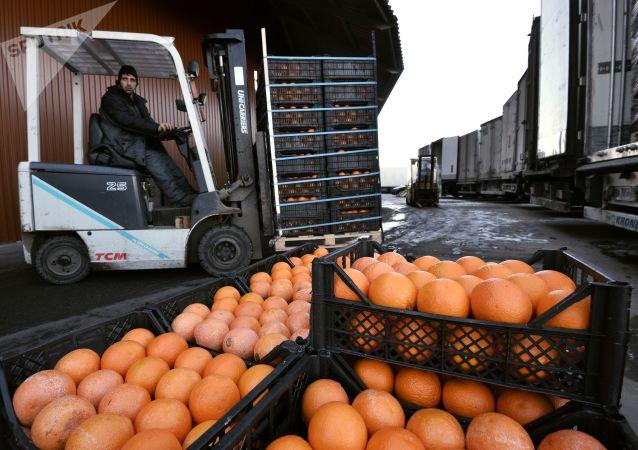 中國代表團赴俄磋商俄羅斯限制中國食品進口問題