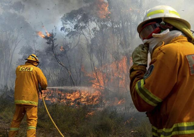 澳大利亞西部森林大火造成30多棟房屋被毀