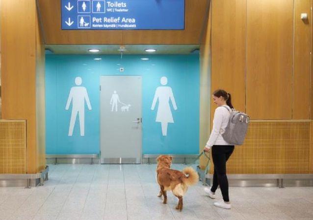 芬蘭機場為寵物狗建造廁所