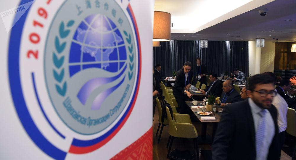 俄外交部:上合組織議長峰會將於今年舉行