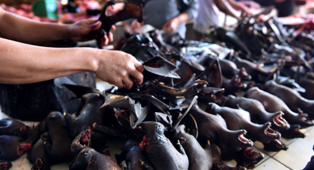 儘管擔心新冠病毒 蝙蝠肉依舊在印尼上架銷售