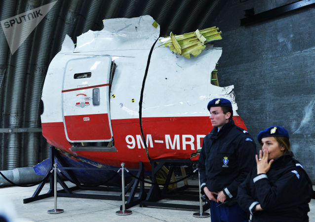 馬航MH17空難調查人員稱有看到發射「山毛櫸」導彈的目擊證人