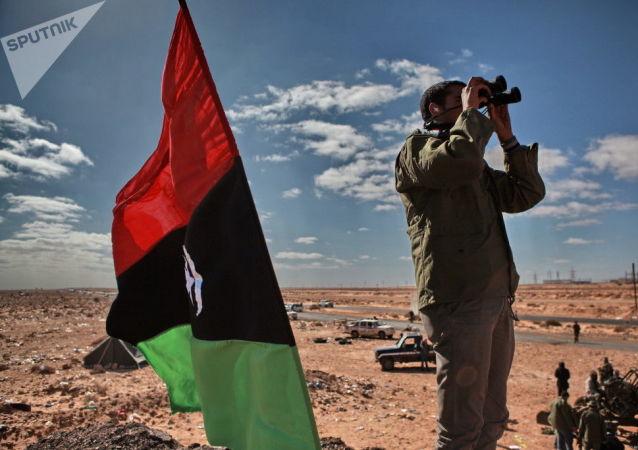 克宮:政治外交對話是解決利比亞問題的唯一選擇