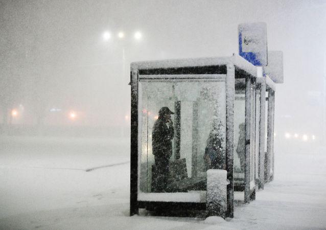 俄濱海邊疆區行政長官:初步評估冰雪天氣造成損失超10億盧布