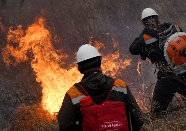 俄羅斯羅斯托夫州野火面積已增至近1600公頃
