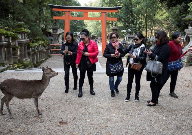 日本將為外國遊客支付費用