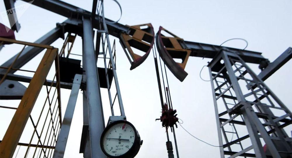 沙特阿拉伯人正在收購各大油氣公司股票