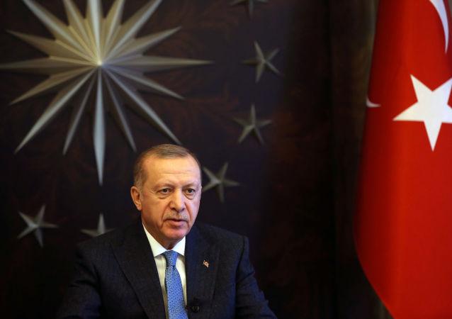 埃爾多安:土耳其將竭盡全力維護敘利亞的領土完整