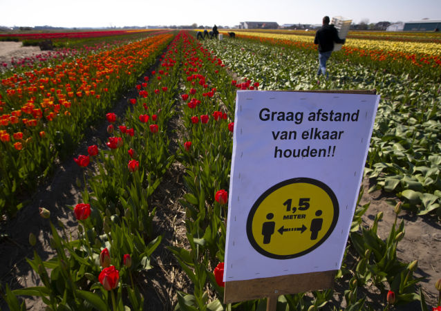 荷蘭疫情高峰已過期 局勢穩定