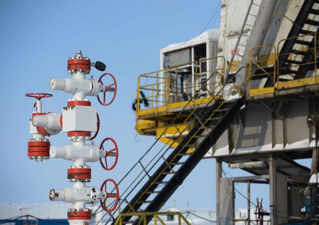 普京:俄羅斯和全球能源都受到衝擊