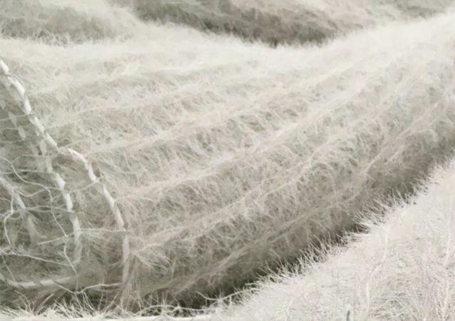 復旦大學研制出大面積柔性顯示織物和智能集成系統